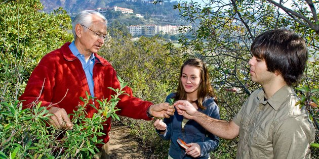 A professor and two students look at plants - Pepperdine University