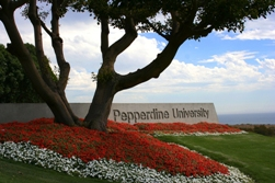 The front entrance sign - Pepperdine University