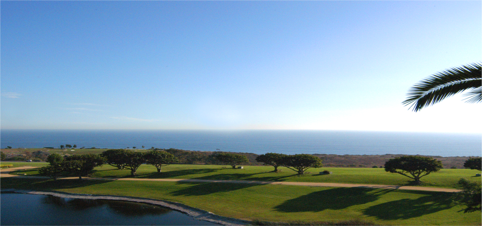 A view of Alumni Park and the ocean - Pepperdine University
