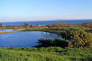 Reclamation Water Ponds in Alumni Park, Malibu Campus